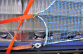 5506104-Container netten/afmetingen 3,50x5,00 m/PE draaddikte 3 mm/maaswijdte 50 mm/kleur: groen